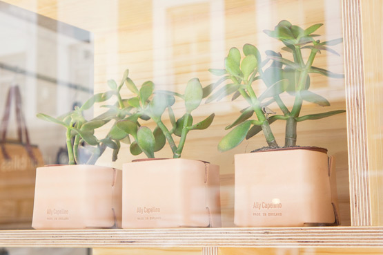 JOELIX.com | Ally Capellino London for #urbanjunglebloggers