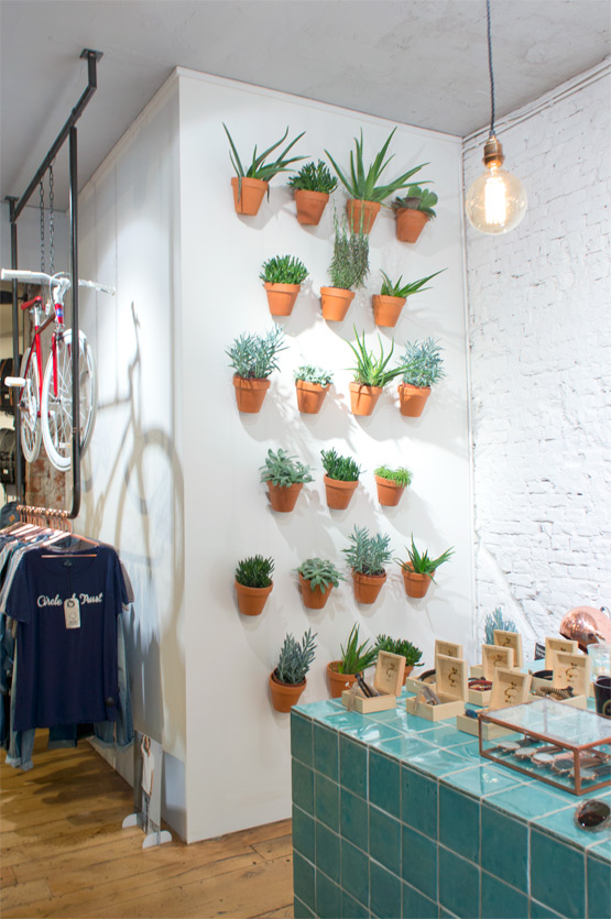 JOELIX.com | Circle of Trust concept store Amsterdam with succulents