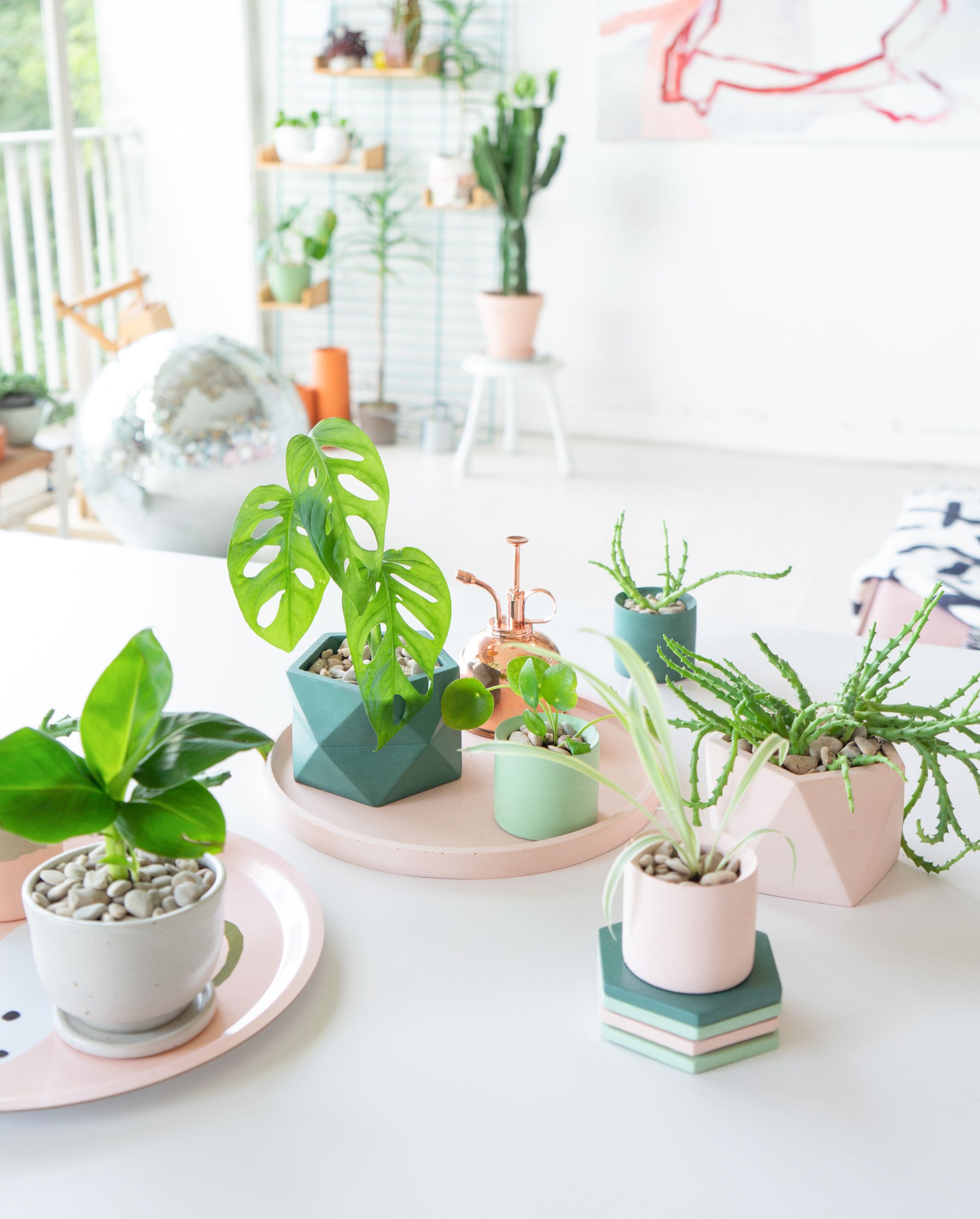 JOELIX.com | Pastel Paradise with concrete pots by House Raccoon #urbanjunglebloggers #houseraccoon #concretepots