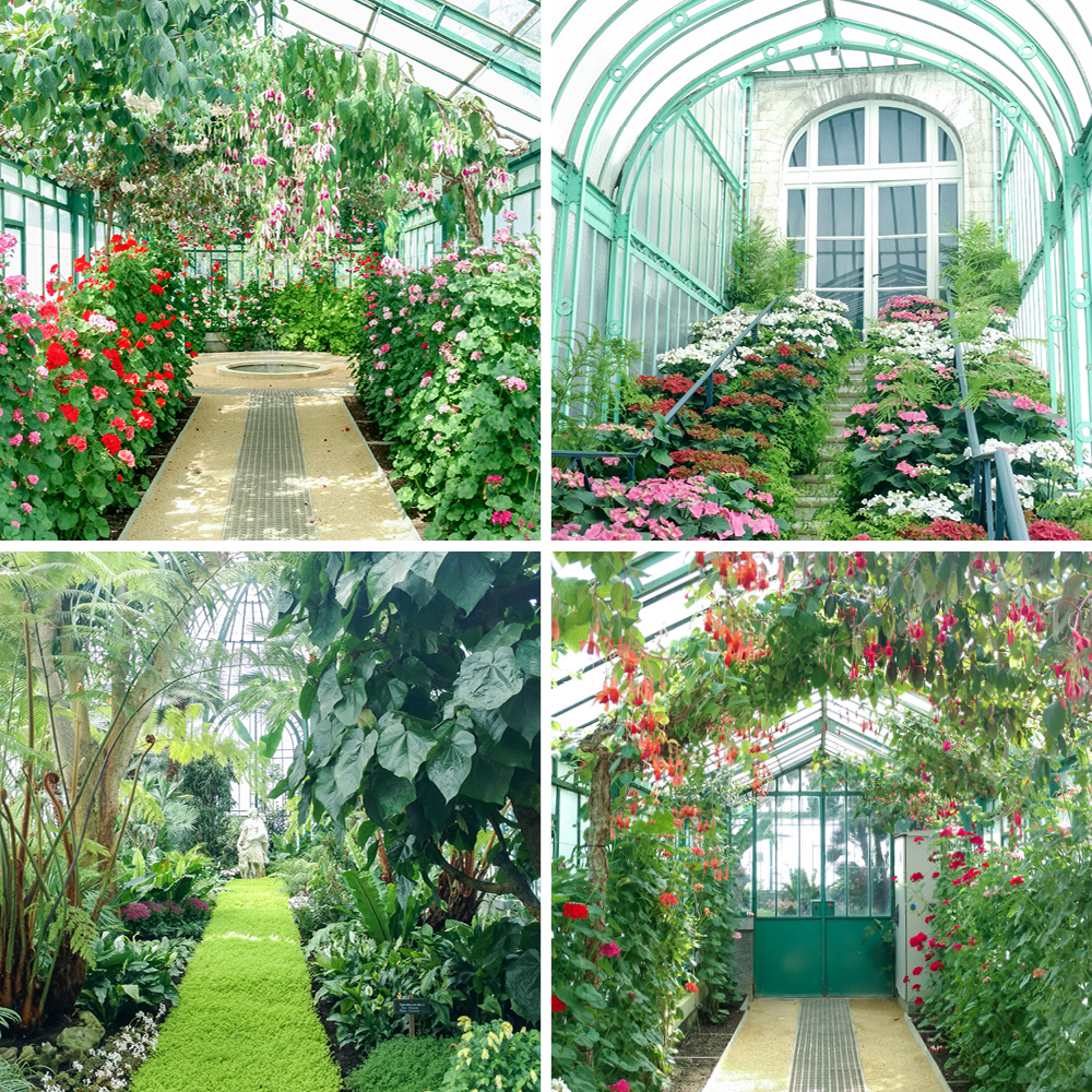 JOELIX.com | Royal Greenhouses of Laeken in Brussels #urbanjunglebloggers