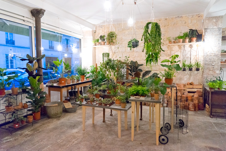 JOELIX.com | Mama Petula plant corner at Welcome Bio Bazar in Paris