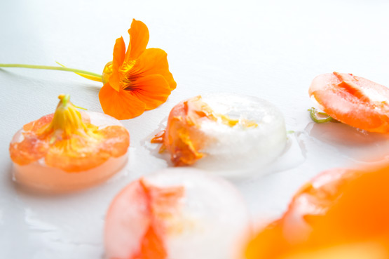 JOELIX.com | Frozen Indian cress orange edible flowers nasturtium
