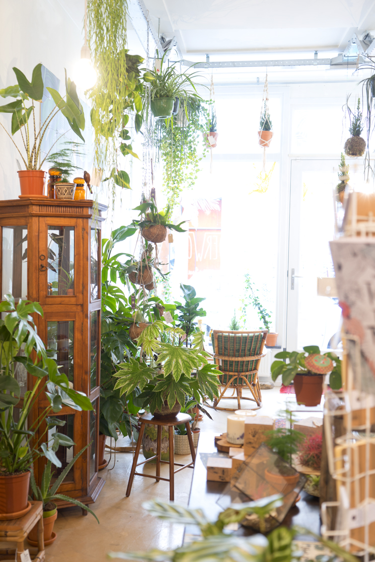 JOELIX.com | Oerwoud plant shop in Den Bosch - The Netherlands