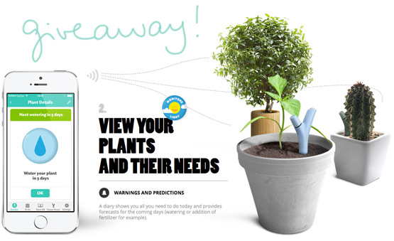 JOELIX.com | Urban Jungle Bloggers about watering your plants + giveaway!