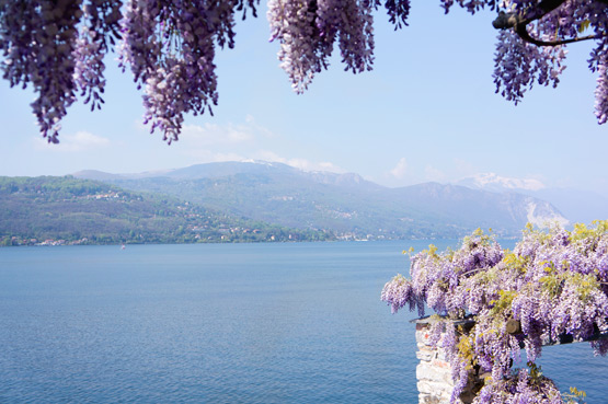 JOELIX.com | Purple wisteria on the Lago Maggiore
