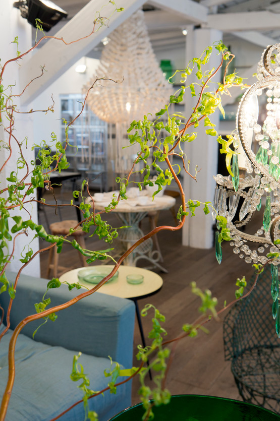JOELIX.com | Spring at Merci Paris shop green branches