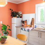 JOELIX.com   painting the kitchen with Blime Coral Brick