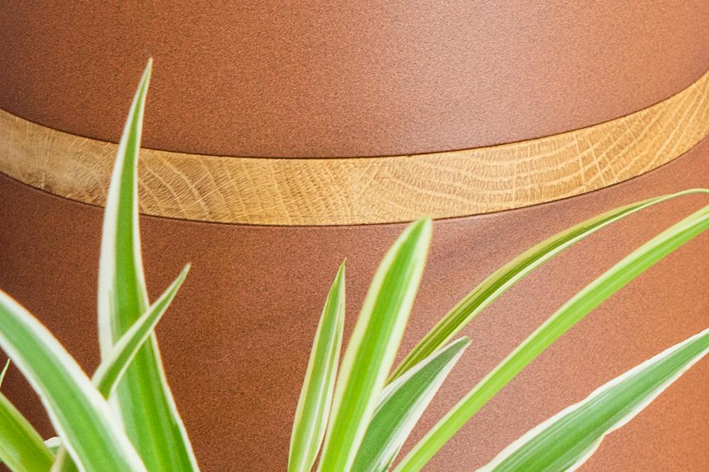 JOELIX.com | Plant Collectors VIJ5 dutch design #urbanjunglebloggers